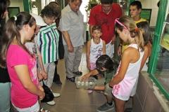02 Ošetřovatel Jan Sobotka ukazuje návštěvníkům právě se líhnoucí mládě krokodýla siamského